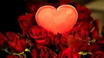 Valentinstag 10 Schnelle Last Minute Geschenke Für Euren