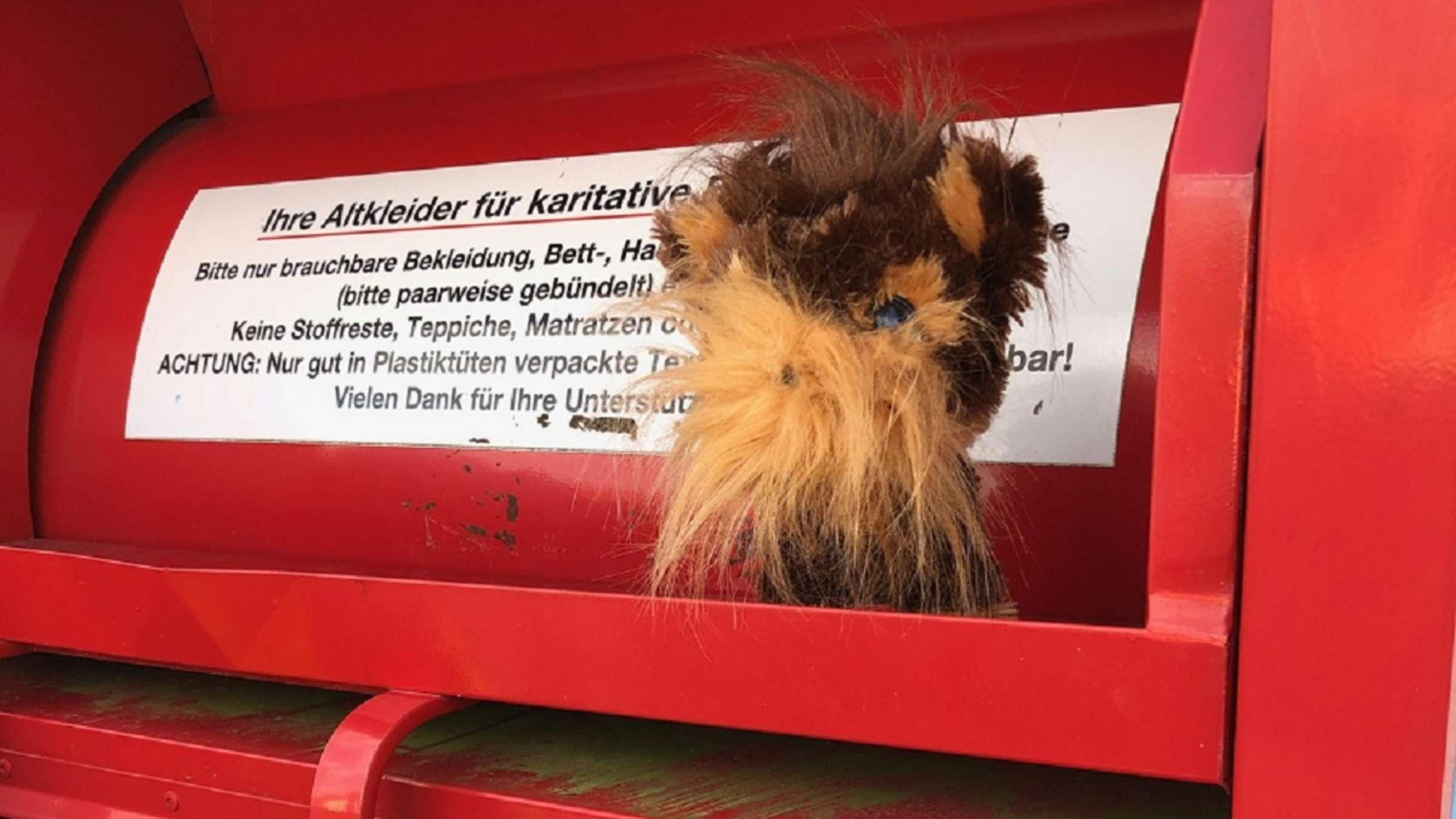 Schwelm Nrw Feuerwehr Befreit Hund Aus Container Und