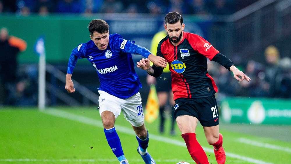Alessandro Schöpf Schalke