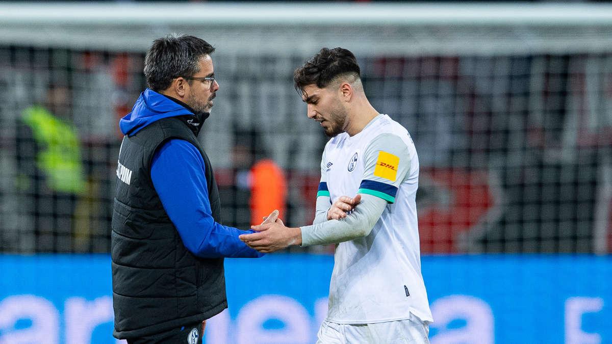 Schalke Stand