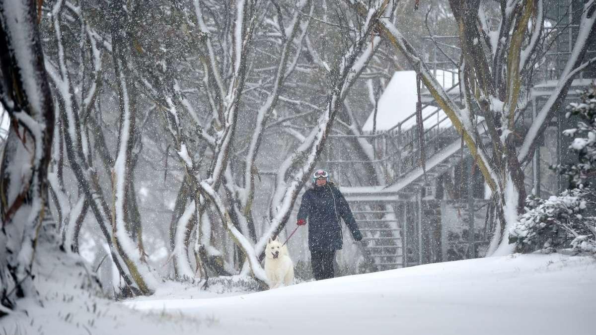 Wettervorhersage Prognose Winter